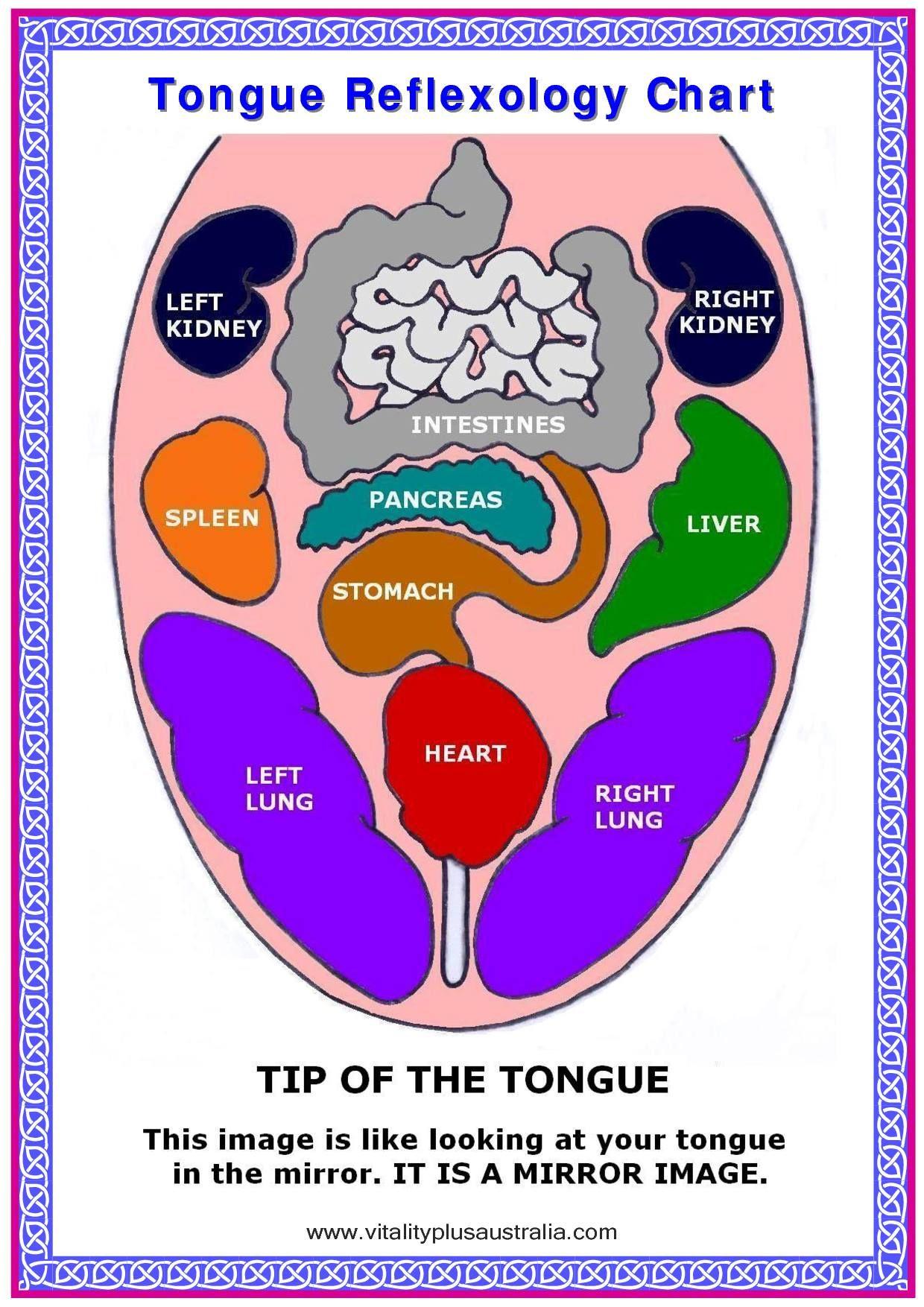 face pressure points diagram honeywell aquastat l6006a wiring tongue reflexology all about health pinterest