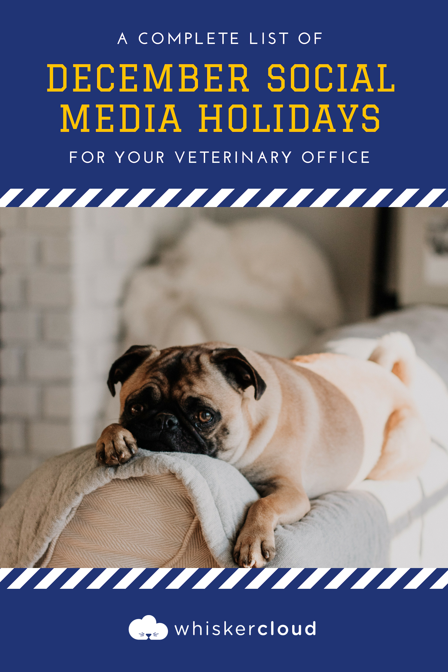 Complete List Of Social Media Holidays For Veterinary Hospitals Veterinary Hospital Veterinary Social Media