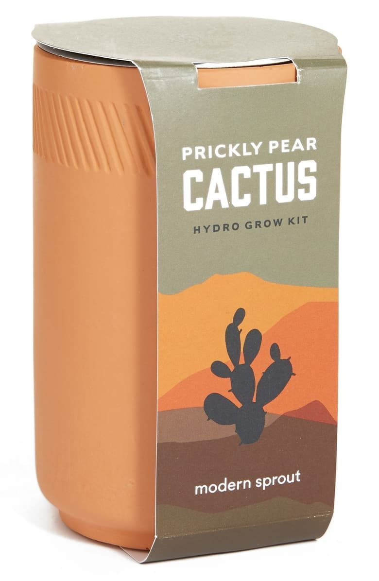 Modern Sprout Prickly Pear Cactus Terracotta Grow Kit Nordstrom Modern Sprout Prickly Pear Cactus Terracotta Grow Ki In 2020 Grow Kit Prickly Pear Cactus Prickly Pear