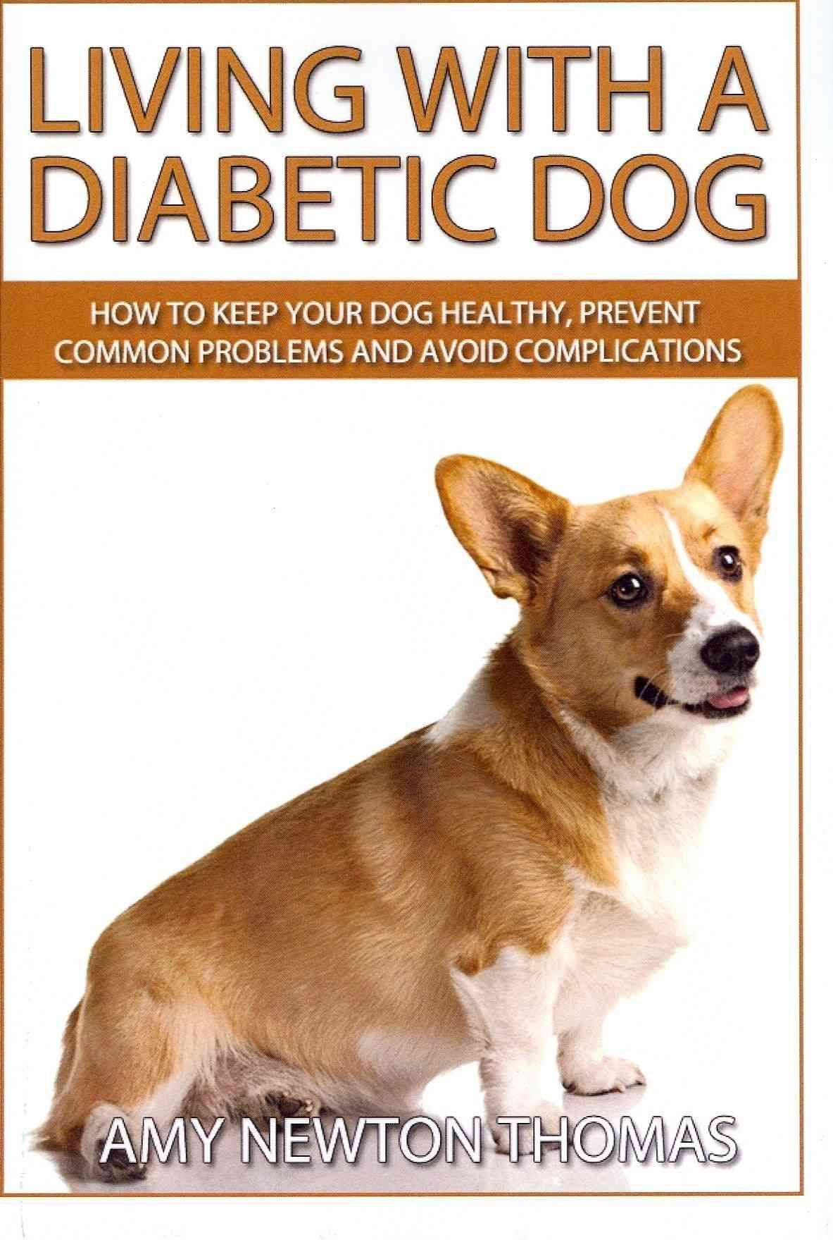 Living With a Diabetic Dog How to Keep Your Dog Healthy