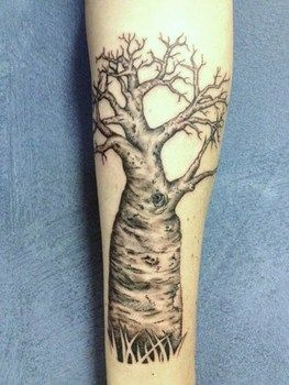 nw kimberley s boab tree tattoo u003c3 tatatatattoo pinterest rh pinterest com boab tree tattoo designs baobab tree tattoo meaning