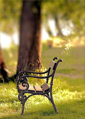 Rustic Garden Bench Ideas