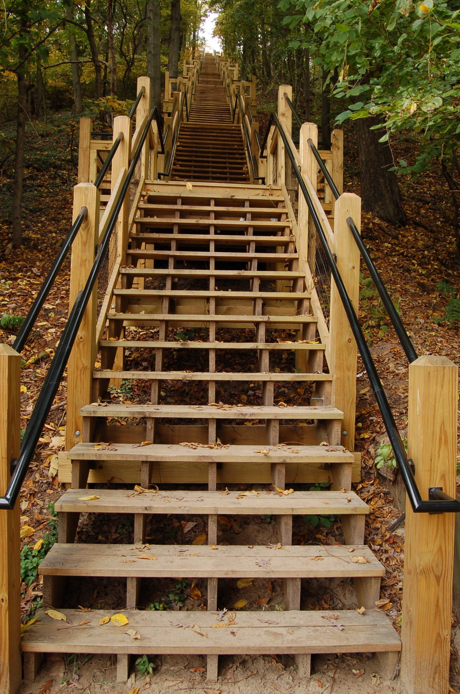 Best Mt Baldhead Stairway Saugatuck Mi Saugatuck Michigan 640 x 480