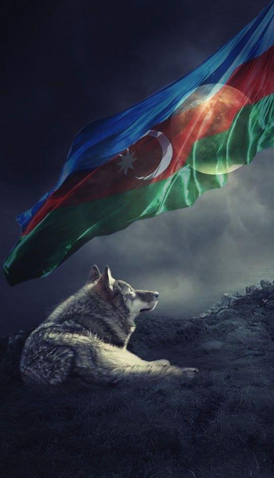 Bozqurd Və Azərbaycan Bayragi Divar Kagizi Turkcu Azərbaycan Bozqurd Dizayn Azerbaijani Flag Azerbaijan Flag Flag Art