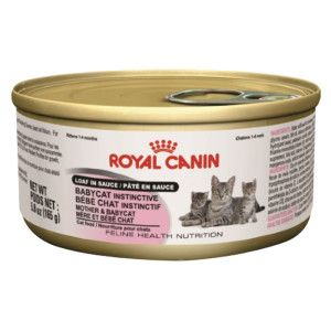 Royal Canin Babycat Whipped Mousse Kitten Food Canned Food