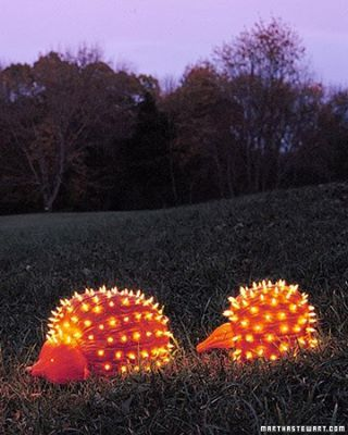 Pumpkin and Gourd porcupines (use drill for holes and 50ct. white holiday lights) Body is hollowed pumpkin-gourd is head tucked into cut out portion of pumpkin.