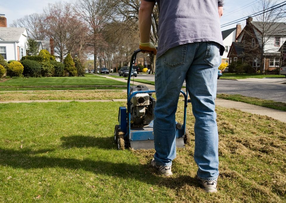 Benefits of lawn dethatching dethatching lawn lawn care