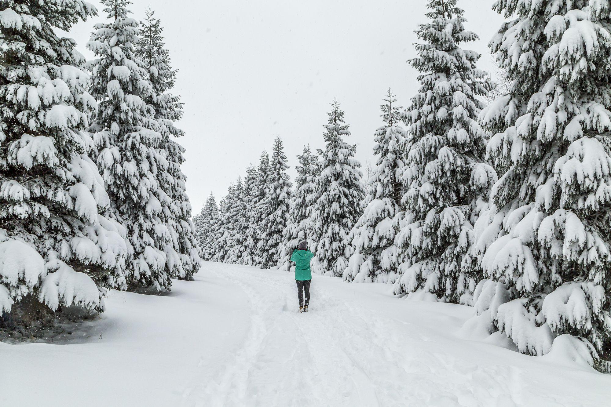Den Wald vor lauter Schnee nicht sehen. In der Schweiz mit Anita und sisterMAG N°22 // Two-thirds snow, one third trees.