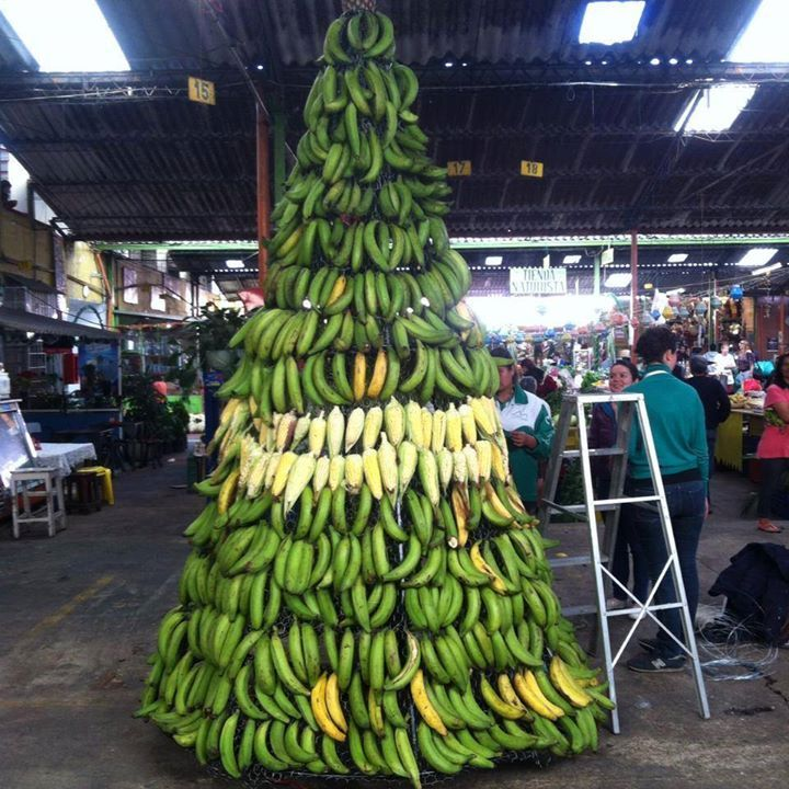 Christmas tree made of plantains in a #Panama #Market | Panama ...
