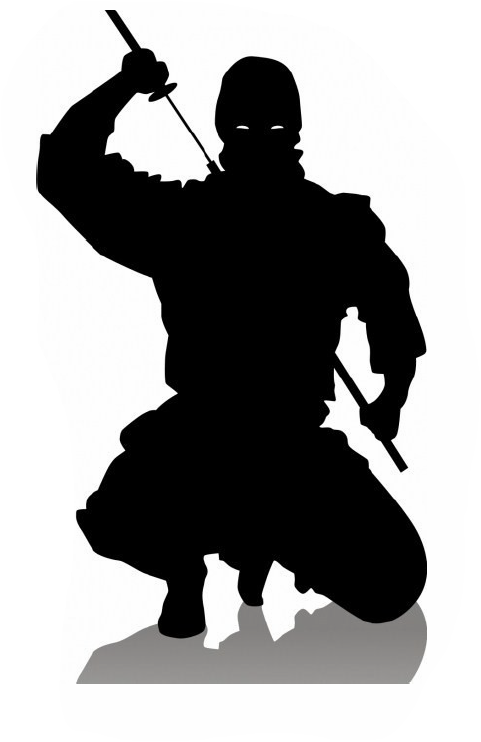 Ninja Silhouette Pesquisa Google Ninja Art Ninja Warrior Ninja