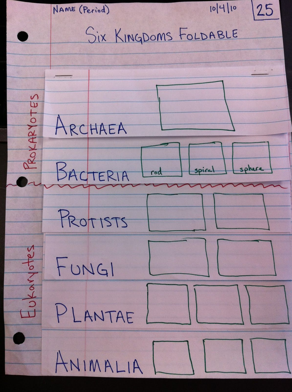 Garner 6th Grade Science Blog SIx Kingdoms Foldable (With