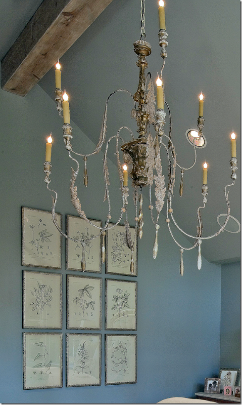 botanical etchings + chandelier