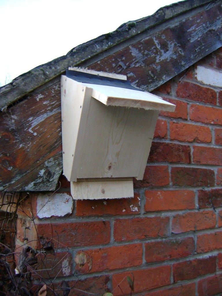 Build A Bat Box Full Tutorial