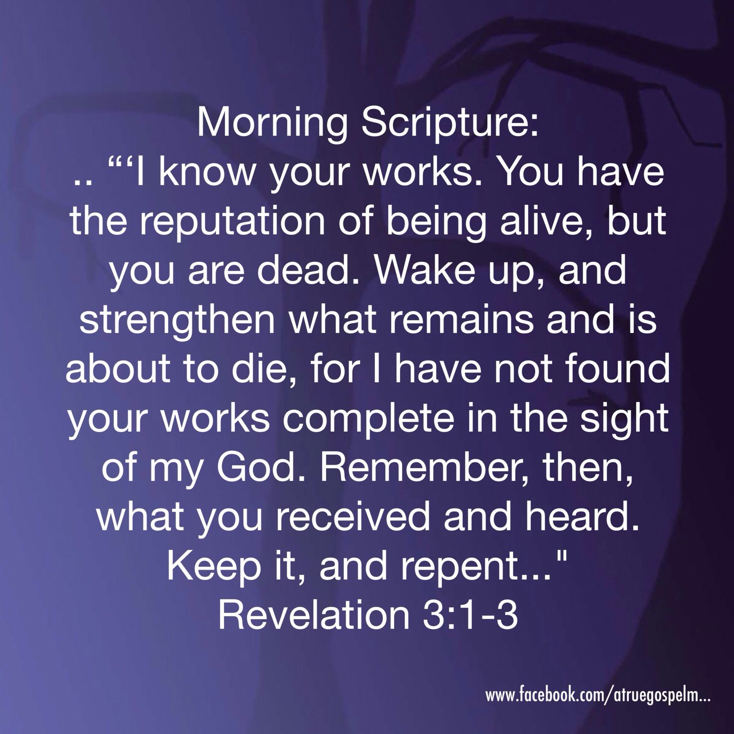 Morning Scripture: You have the reputation of being alive, but you are dead... Repent.. #morningscripture #scripturequote #biblequote #goodmorning #quote #seekgod #dead #alive #repent #preach #praise #testify #teamjesus #lhbk #believethegospel #moms #teens #grandmas #love
