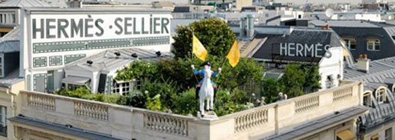 Hermès clandestine... | Paris rooftops, Roof garden ...