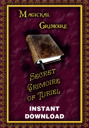 The Secret Pdf File