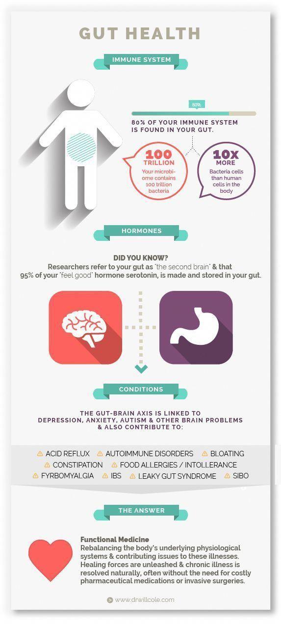 gut health infographic  dr will colegut health infographic  dr will cole