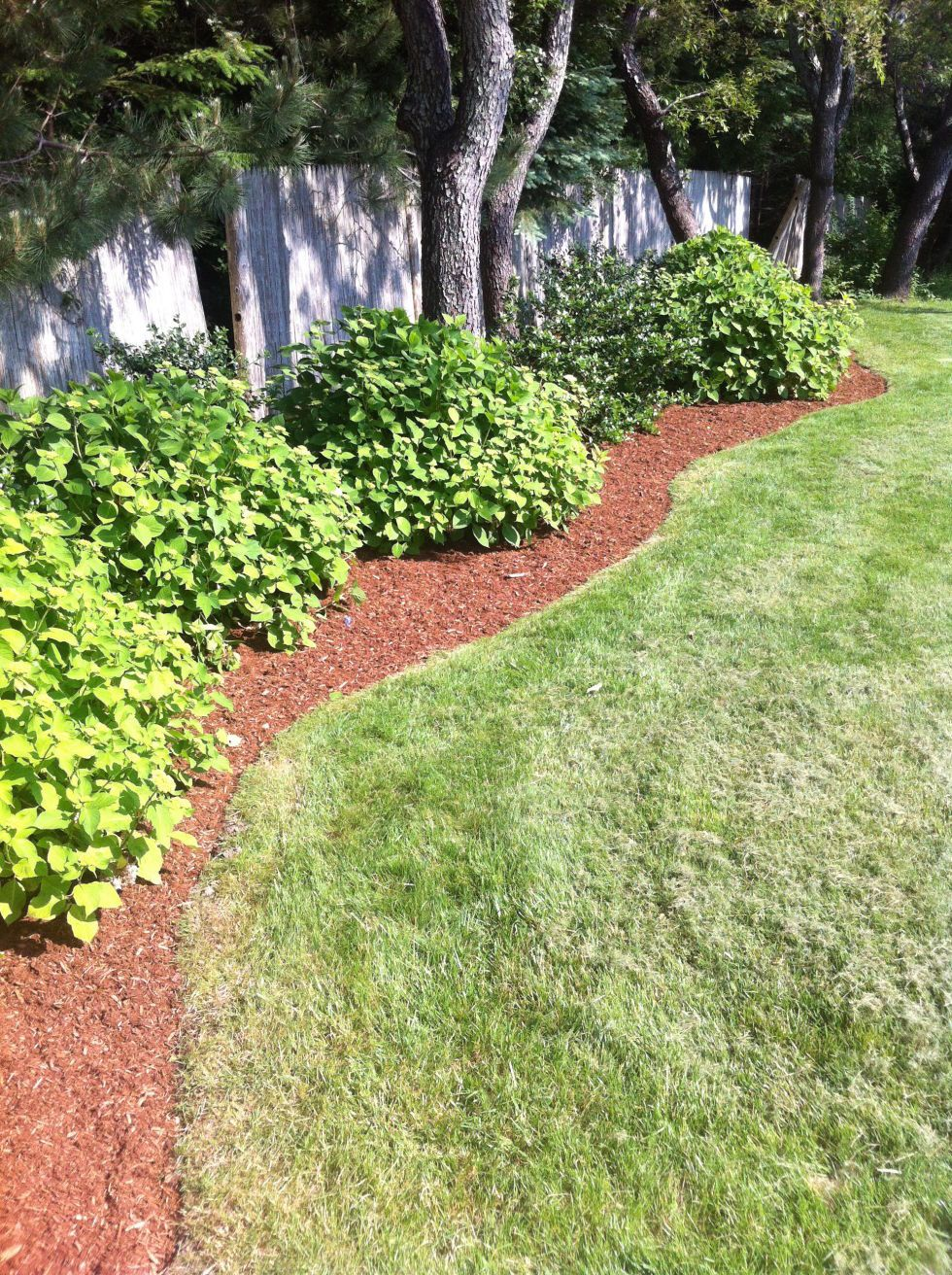 17 Easy Landscaping Ideas For People Who Are Tired Of ... on Low Maintenance:cyizg0Gje0G= Backyard Design  id=15671