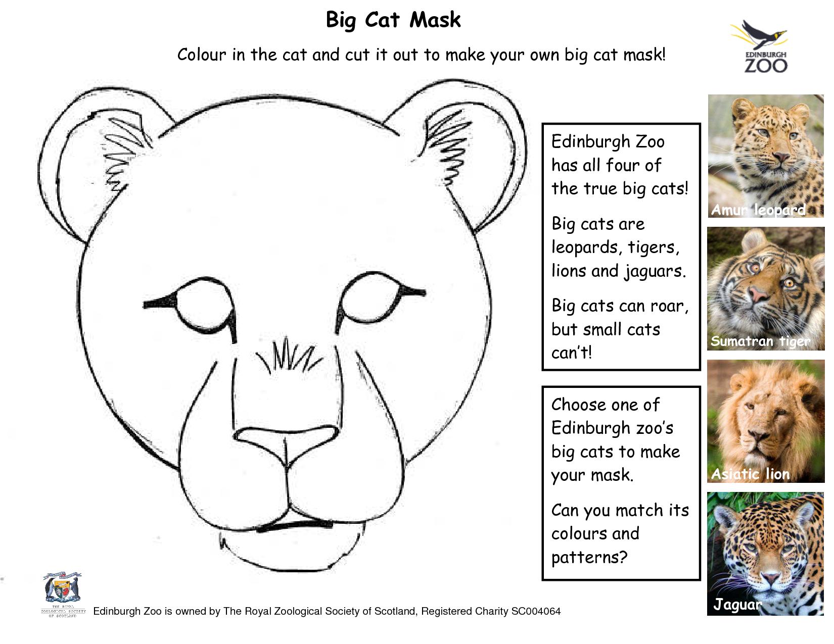 Leopard Mask Template