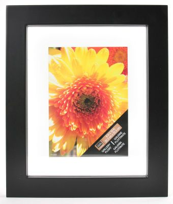 8x10 Gallery Float Frame, large $?