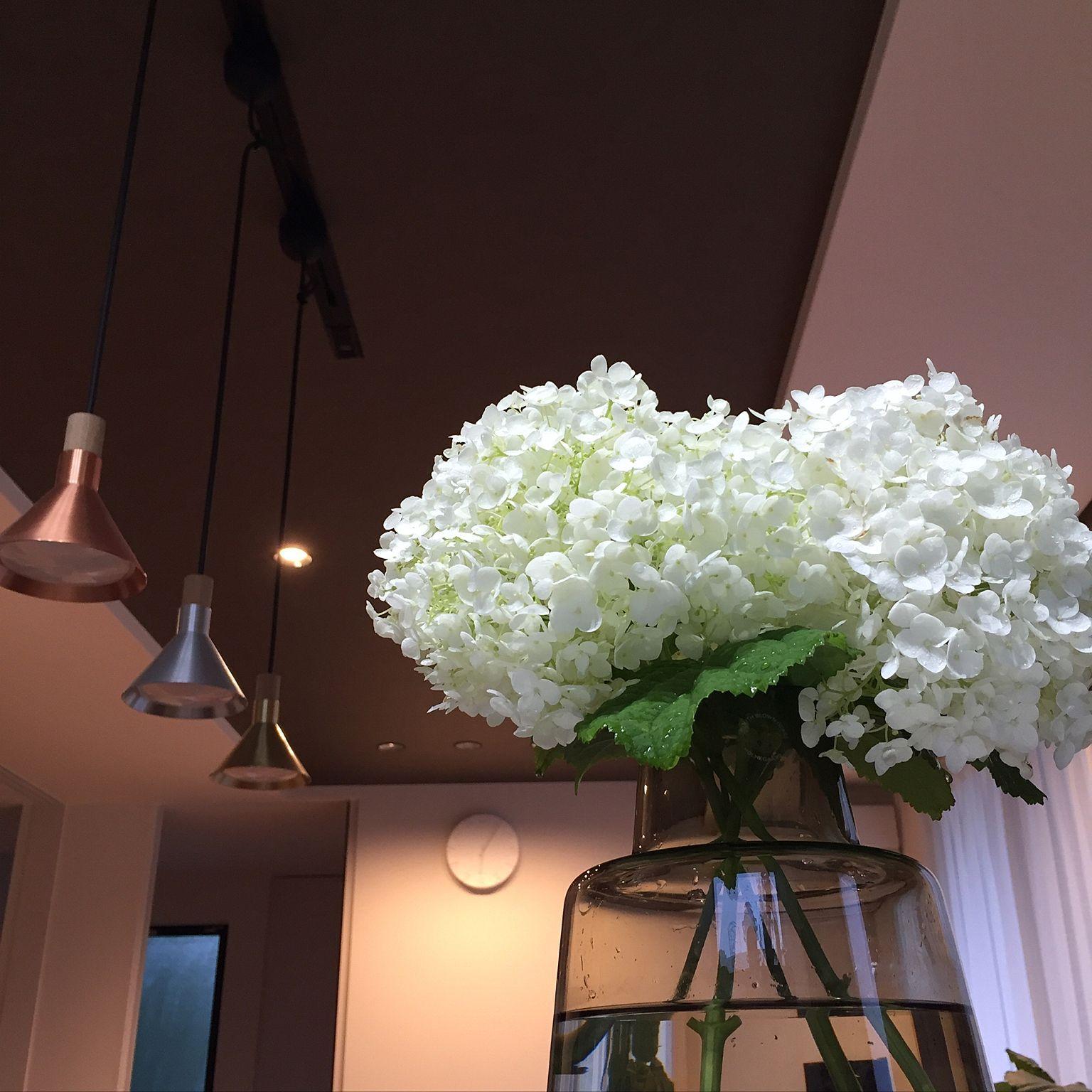 生花もドライフラワーも素敵インテリア アナベルの魅力をお伝えします Folk ドライフラワー ドライフラワーアレンジメント 紫陽花