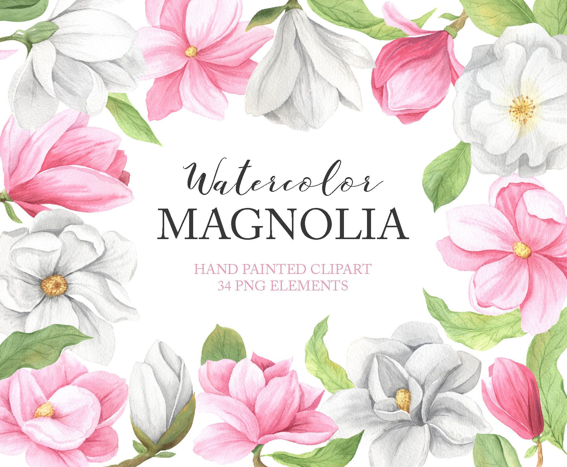 Watercolor Magnolia Flowers Clipart Summer Floral Clip Art Etsy In 2020 Magnolia Flower Clip Art Flower Frame