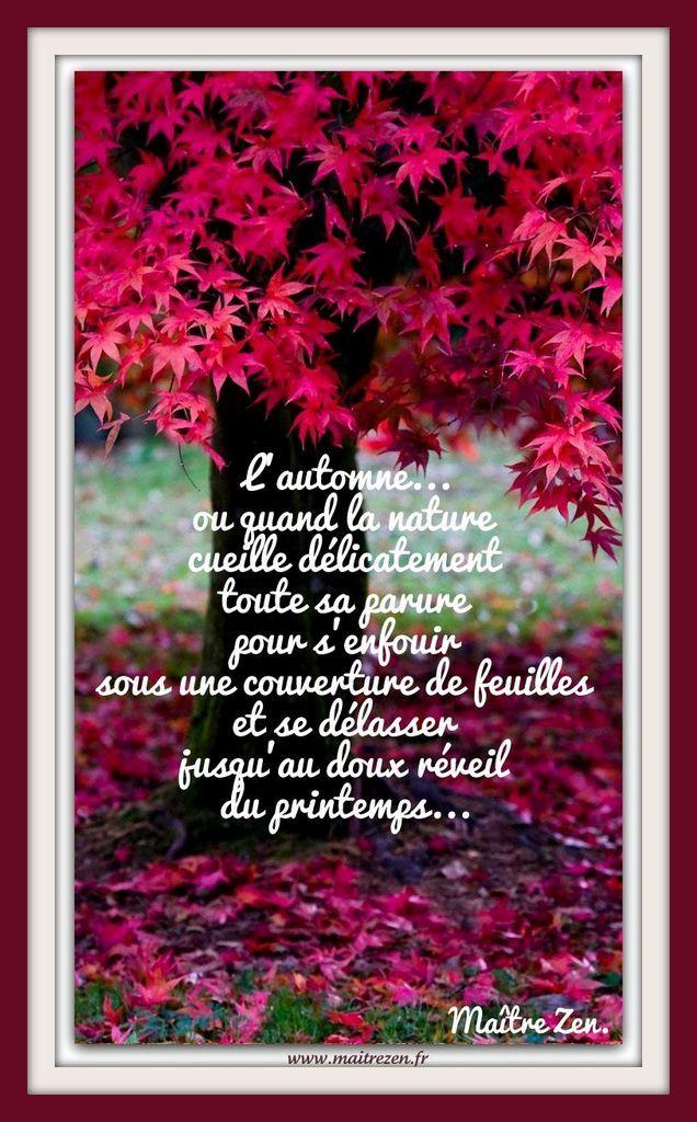 Citation Le Temps D Un Automne : citation, temps, automne, Épinglé, Pensées, Citations, Inspirantes