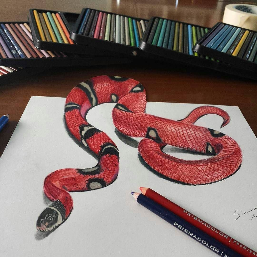3d Drawing Realistic Repost From Slim Draw Ciao Coral Snake 3d