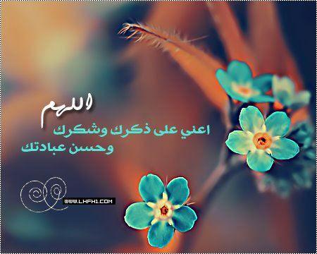Pin By Sonds Mohammad On Islamic مفاهيم إسلامية Beautiful Morning Holy Quran Islam