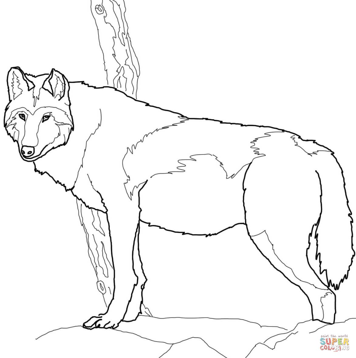 13++ Supercoloring wolf ideas in 2021