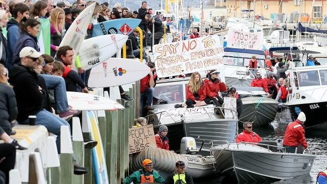 Hundreds turn out to protest against Tassal's Okehampton Bay salmon farm