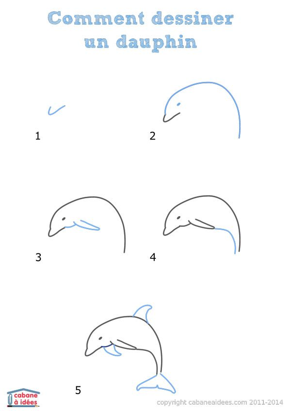 Comment Dessiner Un Dauphin How To Draw Drawings Animal