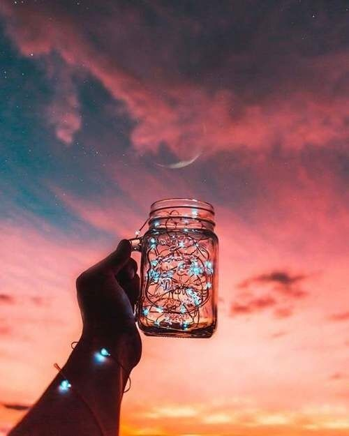 Part Of Me Thought That If I Crushed It I Could Release You From Your Bell Jar I Think That S Why I Cr Tumblr Photography Nature Photography Tumblr Wallpaper