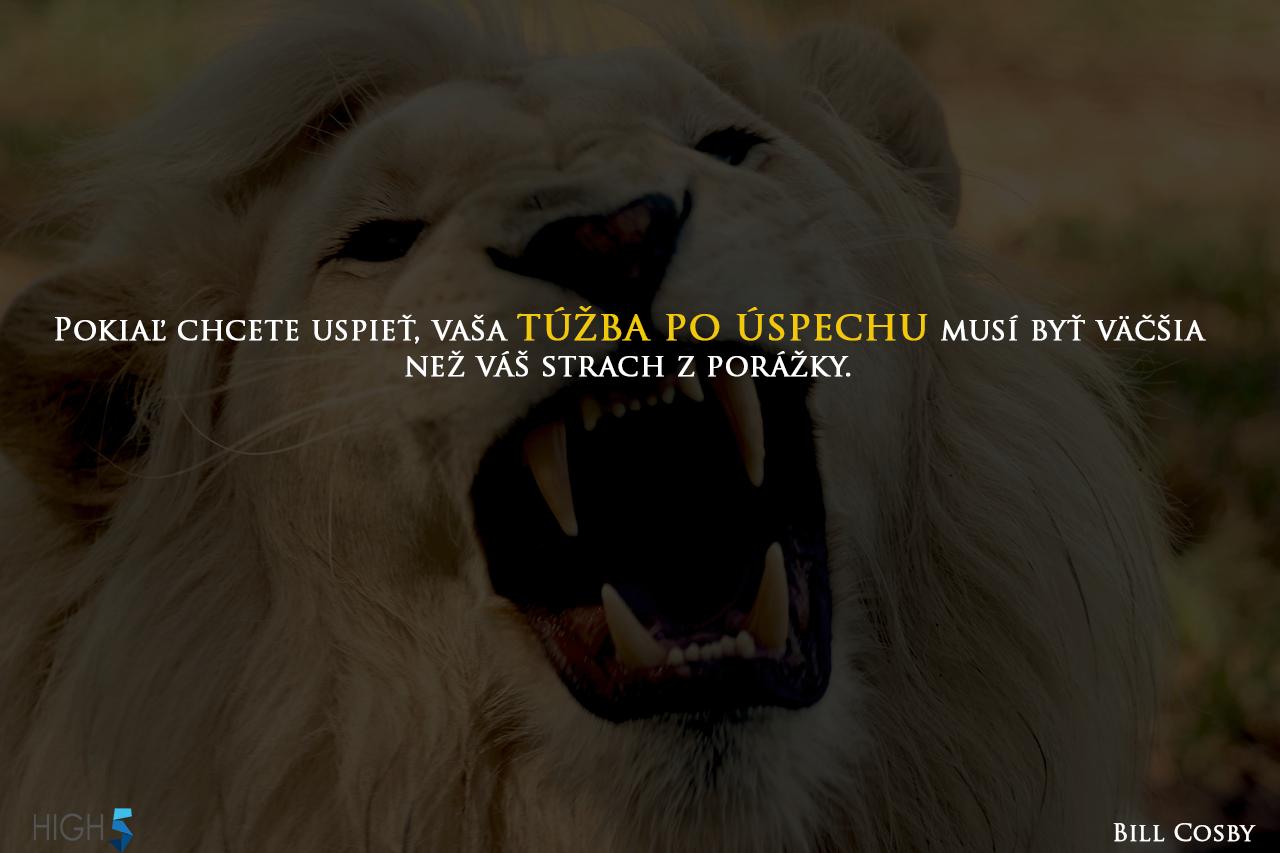 Je Vaša túžba po úspechu dostatočná? Motivácia od high5.sk #lionhigh5