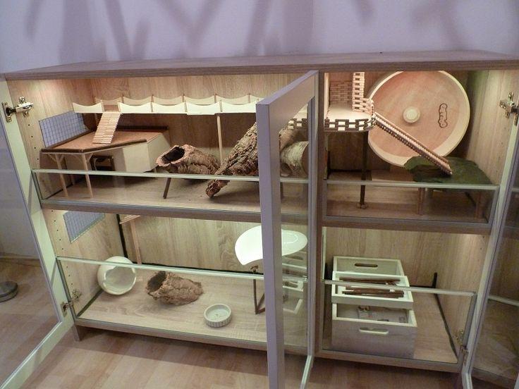 bildergebnis f r meerschweinchen spielsachen guinea pig. Black Bedroom Furniture Sets. Home Design Ideas