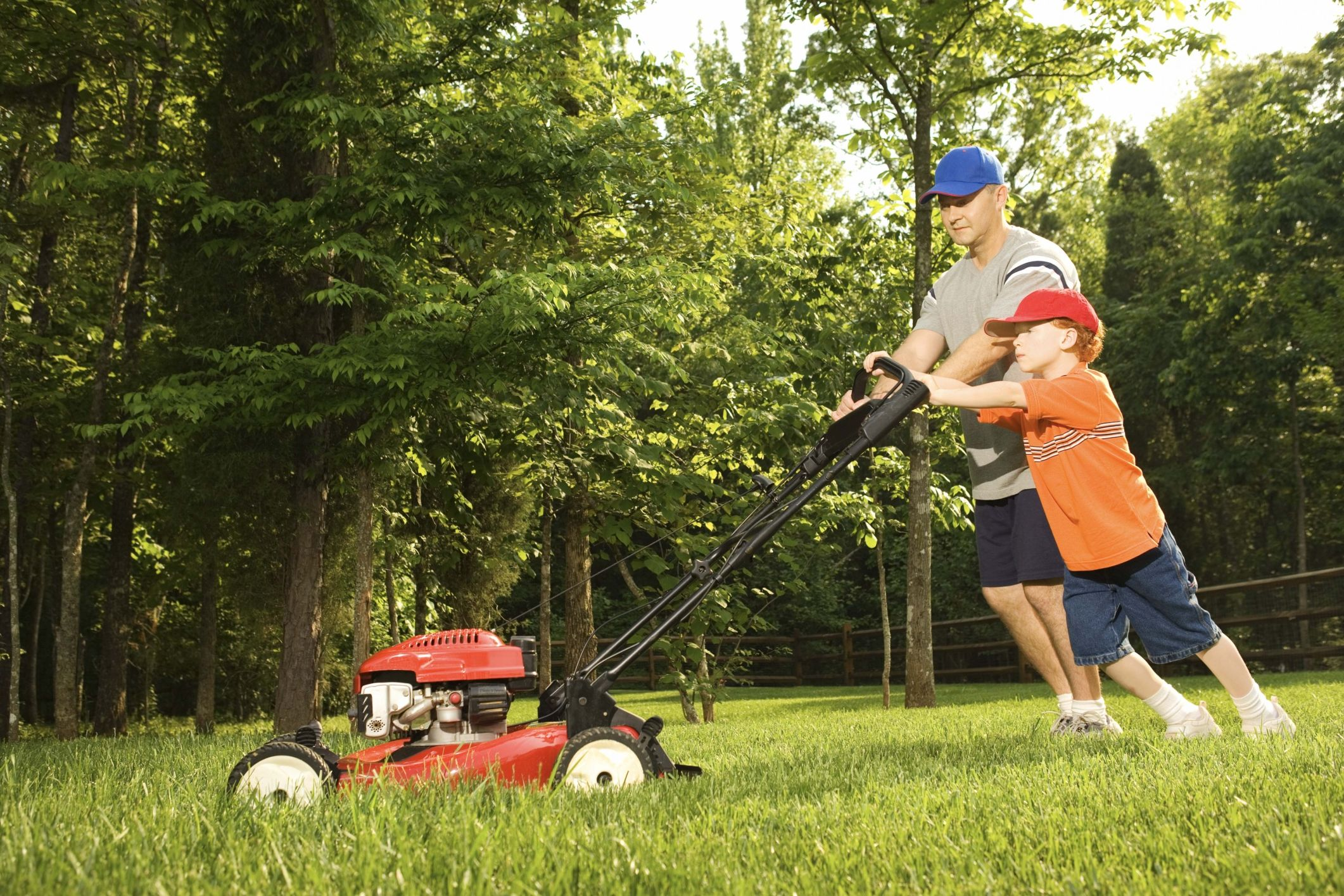 Is Your Lawn Mower Right For You? | Lawn, Lawn mower ...