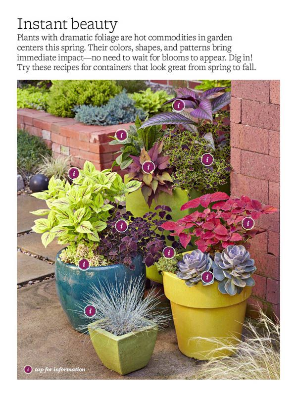 Great tips on potting plants better homes and gardens march 2013 fabulous foliage in for Better homes and gardens canisters