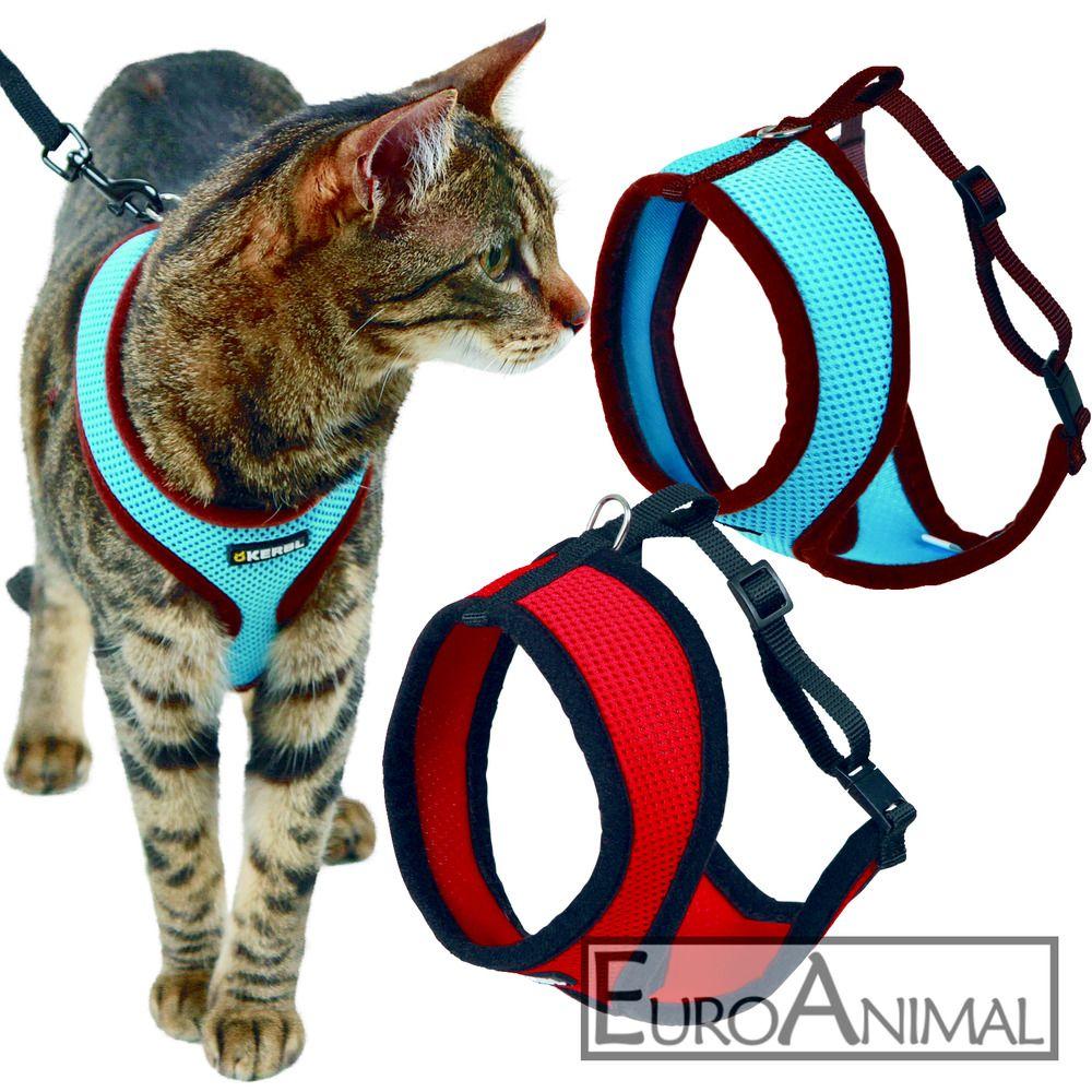 Details Zu Katzengeschirr Mit Leine 120cm Geschirr Halsband Katze