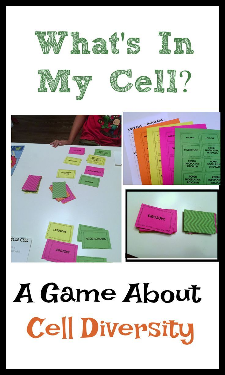 Whats In My Cell A Game About Diversity Steam Pinterest Prokaryotic That Focuses On Eukaryotic And Cells The Of Those Populations