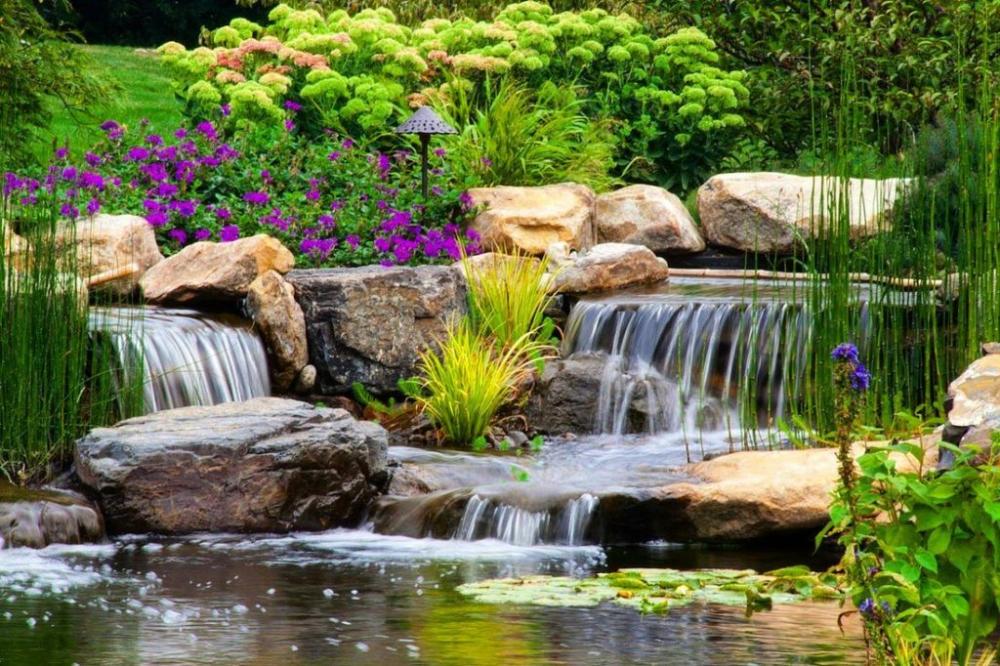 Fish Koi Pond Design Installation C E Pontz Sons Landscape Contractors Waterfalls Backyard Pond Landscaping Backyard Water Feature