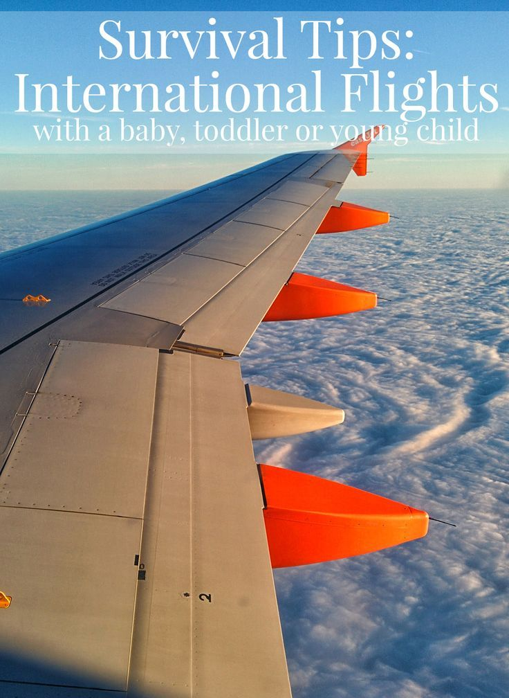 Survival Tips International Flights With Toddlers Toddler