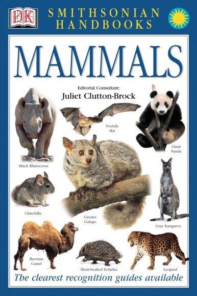 Smithsonian Handbooks: Mammals - primary image
