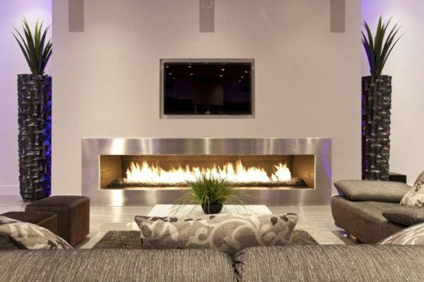 wohnzimmer design mit einem kamin und deko-pflanzen - Wie ein - wohnzimmer ideen kamin