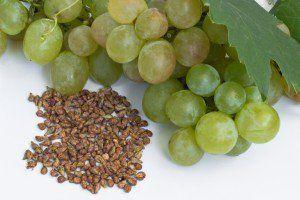 Saviez-vous que les pépins de certains fruits et légumes sont excellents pour la santé. Ceux du raisin, grenade, pamplemousse, courge, renferment...