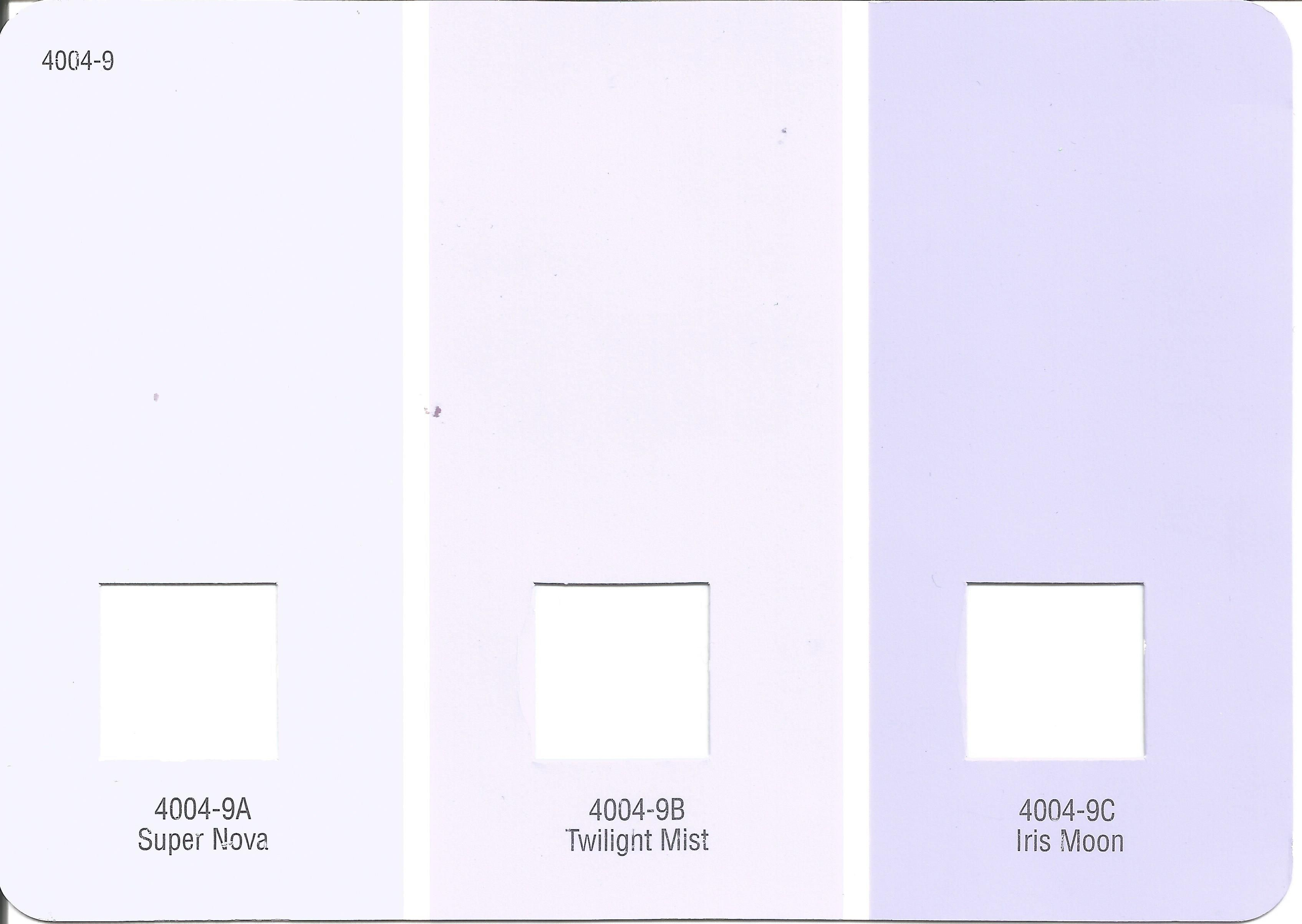 Valspar Paint: Twilight Mist - Will be used as the accent