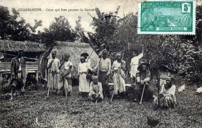 """guadeloupe history essay By runoko rashidi the history of african people is so vast yet so  in an  essay entitled """"the chevalier de saint-georges,"""" edward scobie  member of a  wealthy family from the french caribbean colony of guadeloupe."""