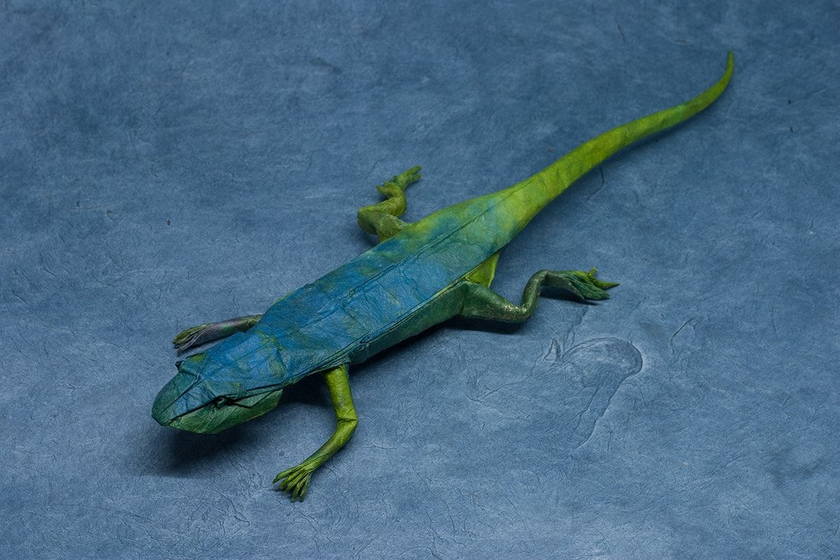 Photo of Lizard, Designed by Chris Heynen and Folded by P. Colman