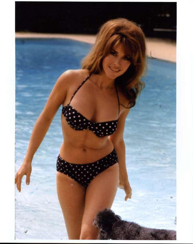 Michelle Carey | Michele Carey She is Hot!
