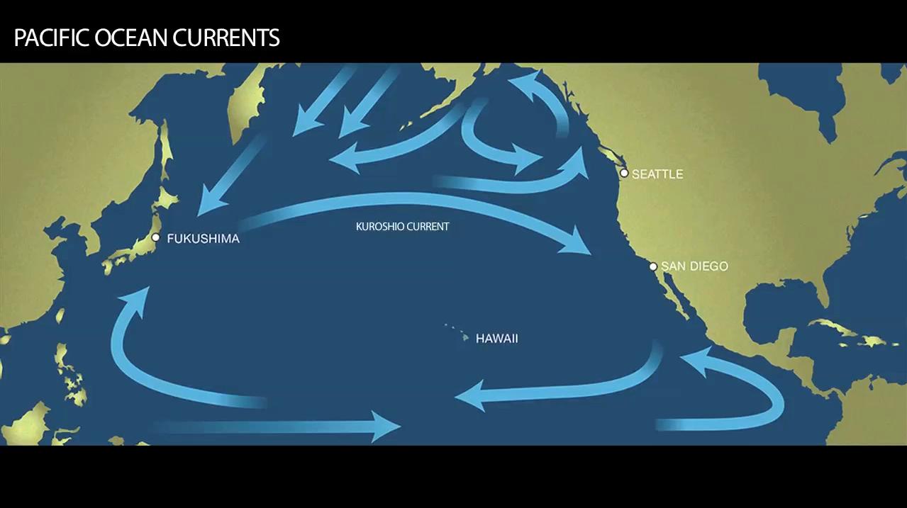 Ocean currents   Radiation from Japan   Pinterest   Fukushima