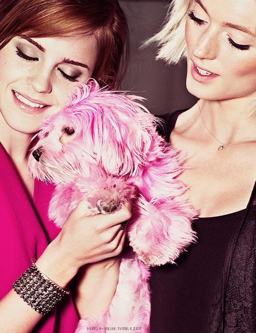 Resultado de imagen de emma  watson perro rosa